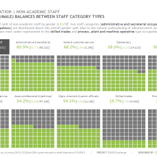 Non Academic staff balance by gender